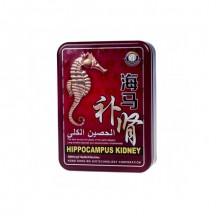 Препарат для эрекции Hippocampus Kidney 30 шт