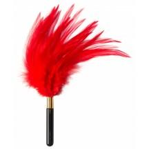 Тиклер Burlesque Plume красный